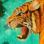 tiger01